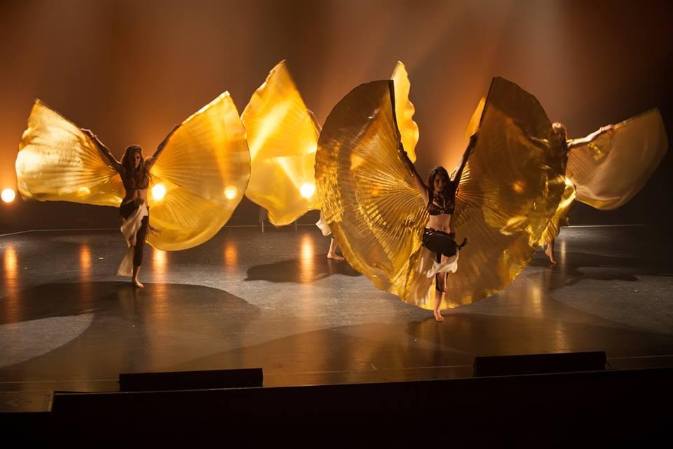 Des papillons d or