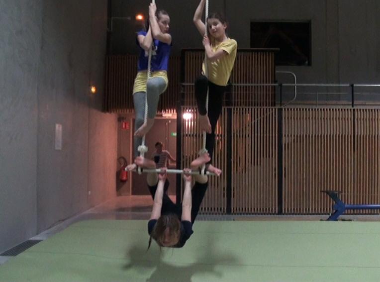 Les acrobaties aeriennes